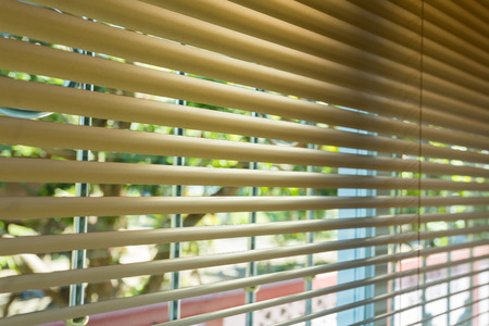 blinds: window blinds open with blur natural view background