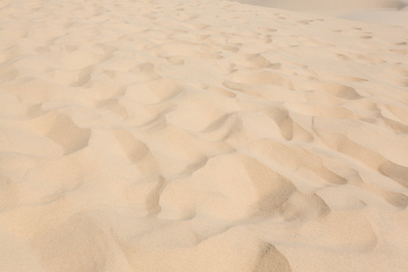 desert footprint: close-up footprint on white sand dune desert in Mui Ne, Vietnam