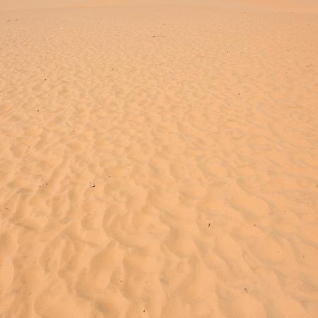 ne: red sand dune desert in Mui Ne, Vietnam
