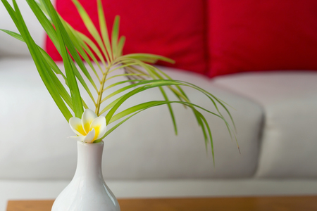 interior living room, white plumeria flower decoration in white vase with white sofa decorated Stock Photo