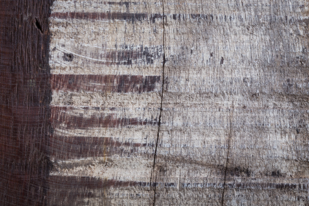 weathered: abstract wood aged weathered rough grain surface texture background