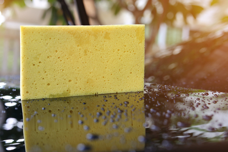 yellow sponge used car wash, water drop on black vehicle part with glass coating skin care