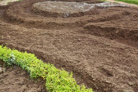preparing soil for planting plant in landscaping garden Standard-Bild - 121740752