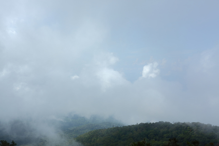 fluffy mist cloud on sky above evergreen mountain of green jungle woods Stock Photo