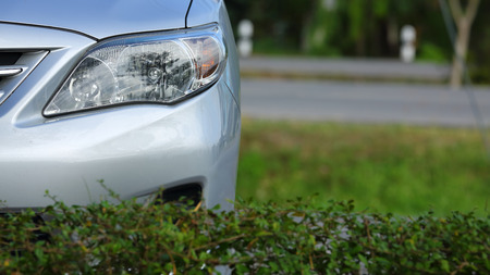 headlight of eco car, vehicle parking in nature