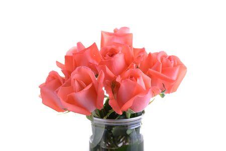 orange rose bouquet flower in glass vase decoration isolated on white background Banco de Imagens - 137893442