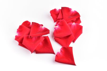 red broken heart of rose petal flower isolated on white background, abstract symbol heartbroken of love problem