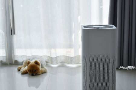 air purifier system cleaning dust pm 2.5 pollution in living room with cute dog in home