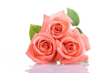 Ton orange de couleur pêche de bouquet de fleurs roses isolé sur fond blanc Banque d'images