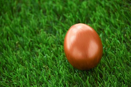 copper gold easter egg on lawn green grass 스톡 콘텐츠