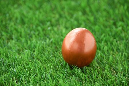 copper gold easter egg on lawn green grass Stock fotó