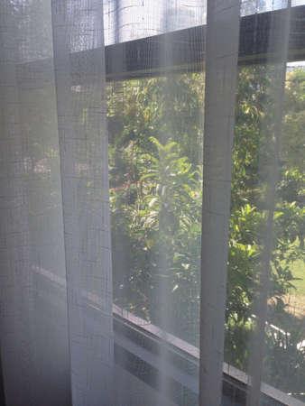 see through: See Through Curtain Stock Photo
