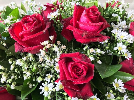 Red roses arrangement Stock Photo