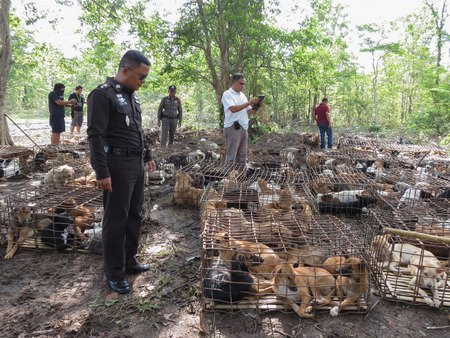 cruelty: A CALL for Animal Rights Thailand Later on (10 Oct 2014), the National Legislative Assembly (NLA.) Is considering a bill to prevent cruelty and animal welfare. the principle is B And today, the Tharae Sakon Nakhon, Thailand, the famous trade.