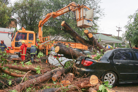 windstorm: Thunderstorms at SAKON NAKHON THAILAND  On 30 March 2558 IV. Severe storm blew down the most in 10 years, Sakon Nakhon. The storm has blown building rooftops, trees, broken power poles were felled. Caused power outages and power to the city. A broken tree