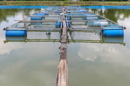 fish farm: Fish farm cages By Sufficiency Economy Thailand