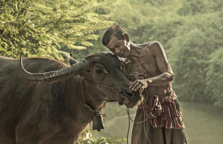 Love is love of peasants loyal to Buffalo.