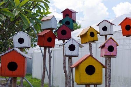birdwatcher: wooden bird house on the park.