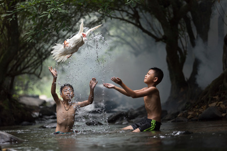 threw: The boy threw a white duck from the stream. Stock Photo