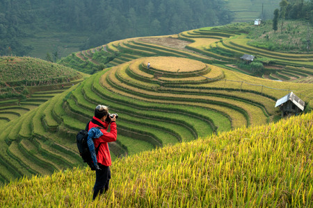 Photographers taking pictures scenery rice terraces in Vietnam. Stock fotó