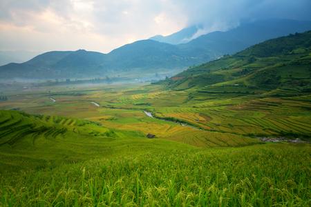 Vietnam Tu Le Yen Bai Rice terrace landscape this is a field green of Vietnamese  and the best of landmark tourist of north Vietnam.