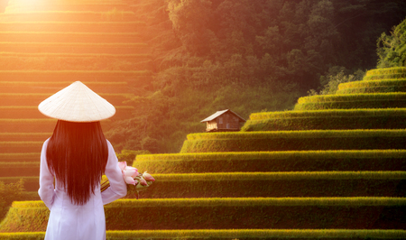 Vietnamese Ao Dai traditional dress of Vietnam and rice field on terrace mountain. 写真素材