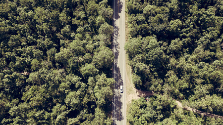Top view the road in forest from drone of nature.