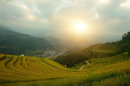 Vietnamese rice field on terraced in Mu Cang Chai Vietnam.