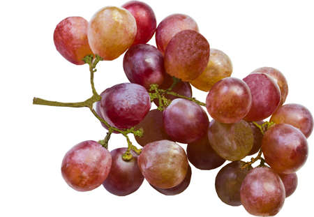 red grapes on white  photo