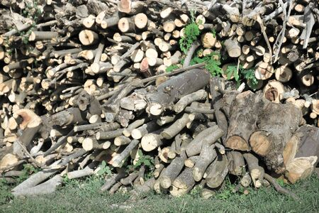 Prepared firewood photo