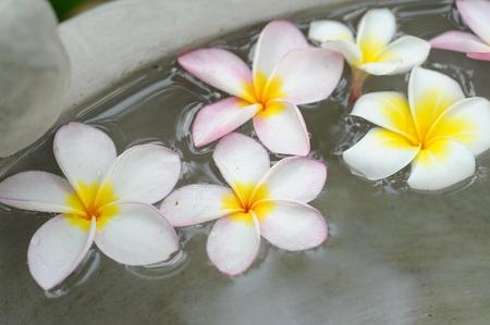 flower spa photo
