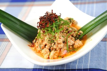 delicious spicy pork salad thai food Stock Photo - 9484172
