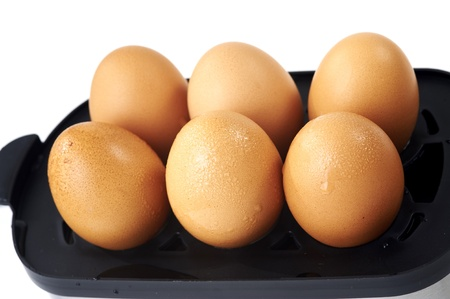 eggs Stock Photo - 10047022