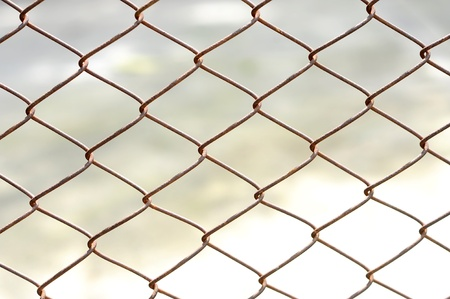 wire fence: iron wire fence