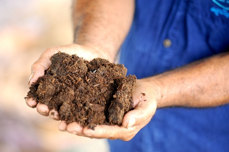 handful: hands with soil Stock Photo