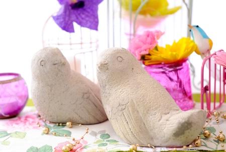 cute birds photo