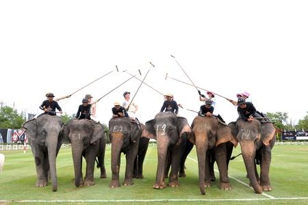 elephant polo in hua hin thailand - 11 september 2011