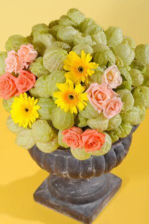 camomiles macro: bouquet of flowers Stock Photo