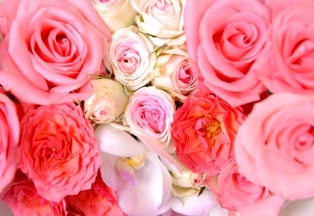 Mixed roses background Stock Photo - 10739906