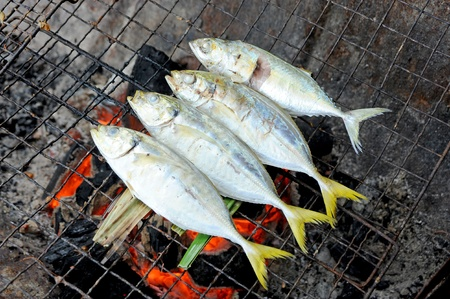 fish grill on grilling sticks photo