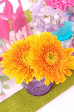 flower Stock Photo - 10963210