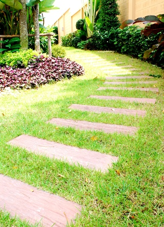 pave: Garden stone path with grass growing up between the stones