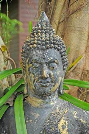 Buddha statue Stock Photo - 11720319