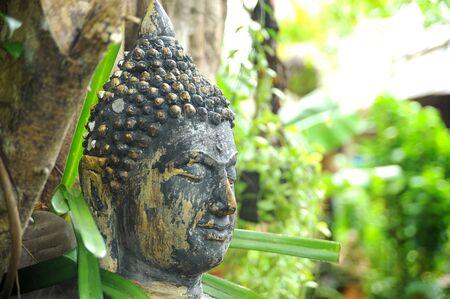 cabeza de buda: Buda Foto de archivo
