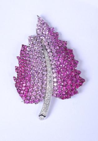 brooch: Jewelry Stock Photo