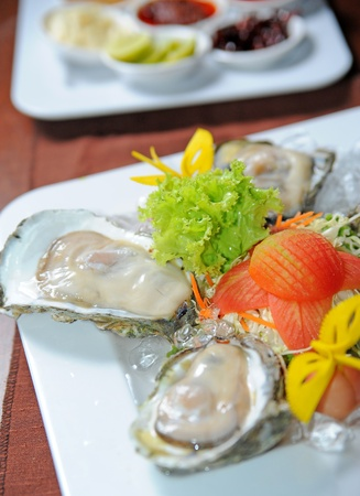 oyster Stock Photo - 11852140