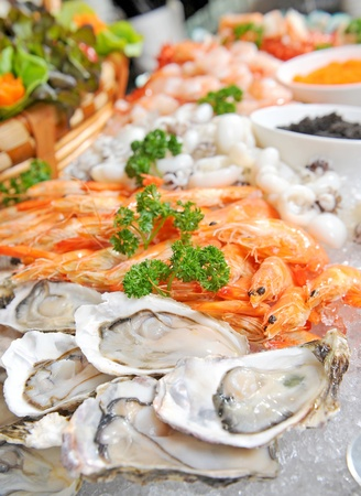 oyster shell: Fresh seafood