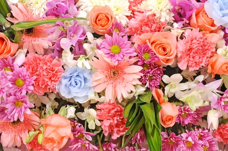 Colorful flowers background photo
