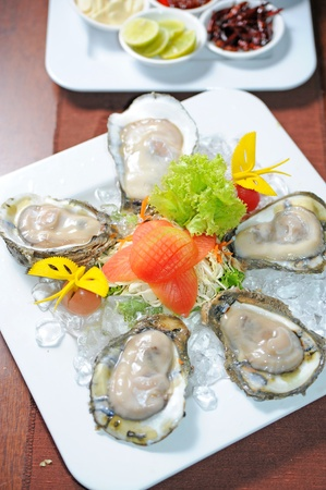 Oysters Stock Photo - 12240848