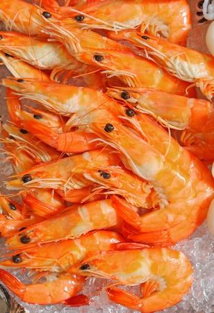 tiger shrimp appetizer Stock Photo - 12240741